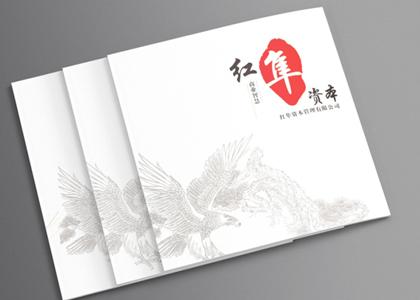 盾朗案例:红丰金融画册设计