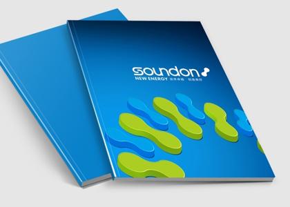 盾朗案例:桑顿新能源宣传册