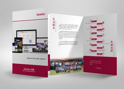 盾朗案例:genexus中国彩页设计